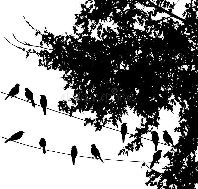 Vogels op draad stock illustratie