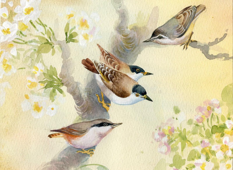 Vogels op een tot bloei komende appelboom vector illustratie