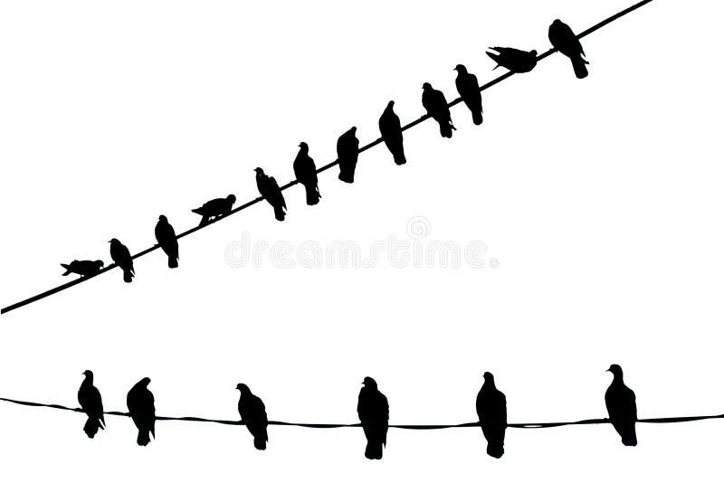 Vogels in Zuivere Zwart-wit royalty-vrije illustratie
