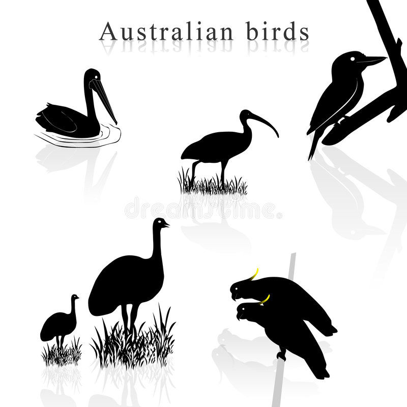 Vogelschattenbilder vektor abbildung