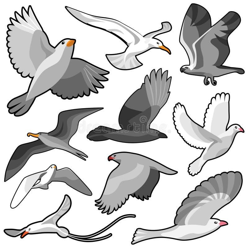 Vogelset vektor abbildung