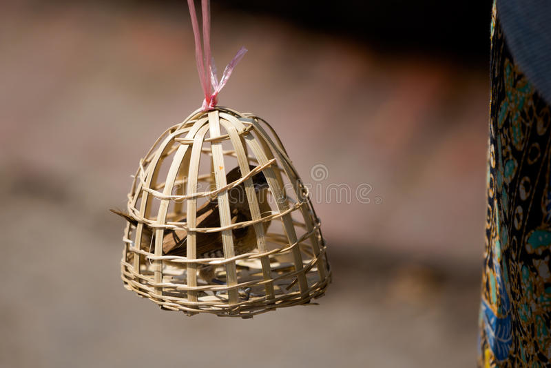 Vogelsklave im Bambuskäfig stockfotografie