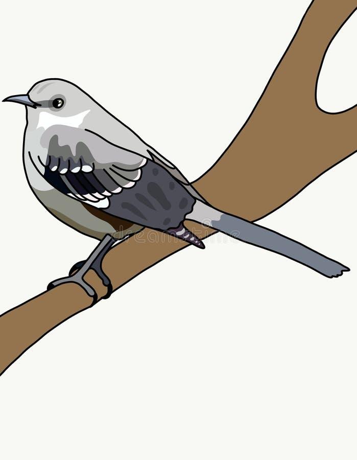 Vogelspotlijster stock foto