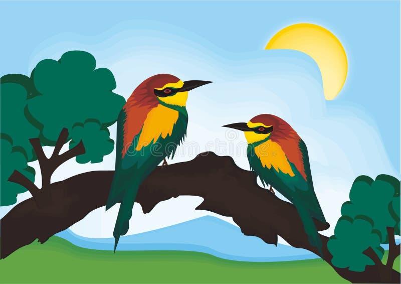 Vogelvektornatur stockfotos