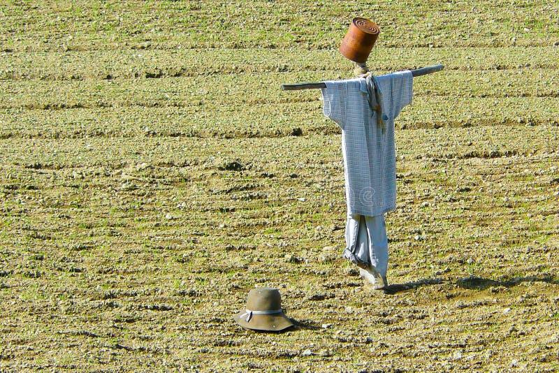 Vogelverschrikker met kleding en hoed royalty-vrije stock foto's