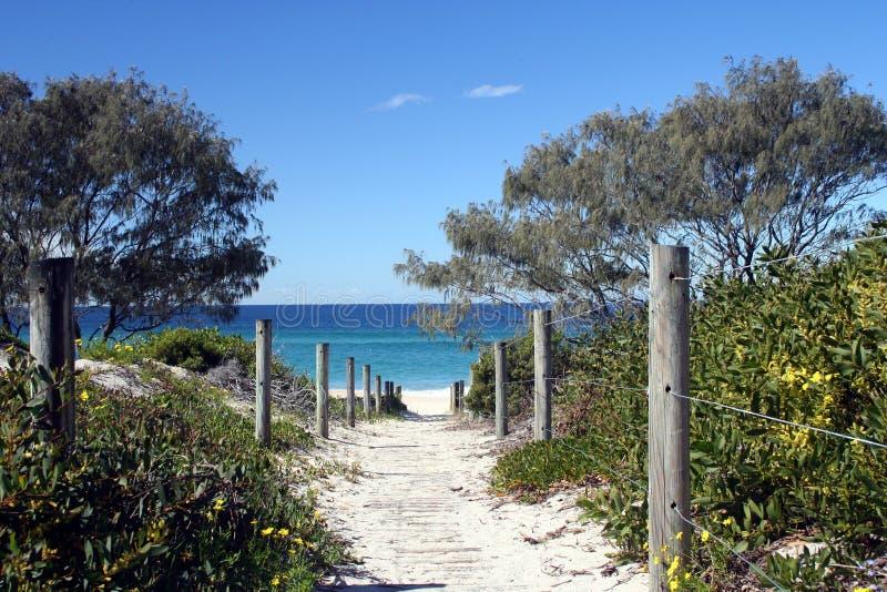 Voie à la plage photographie stock libre de droits