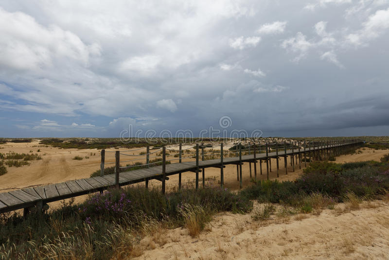 Voie à la plage sur l'île de Culatra en Ria Formosa, Portugal photographie stock
