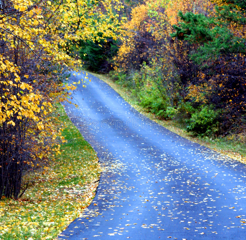 Voie d'automne images stock