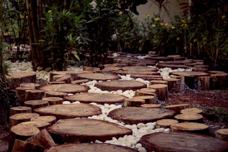 Voie dans le jardin, pelouses vertes avec des voies en bois de plancher photographie stock libre de droits