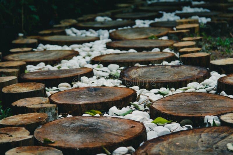 Voie dans le jardin, pelouses vertes avec des voies en bois de plancher photos stock