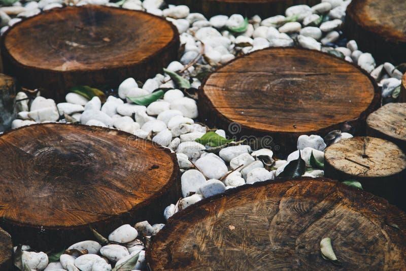 Voie dans le jardin, pelouses vertes avec des voies en bois de plancher photos libres de droits