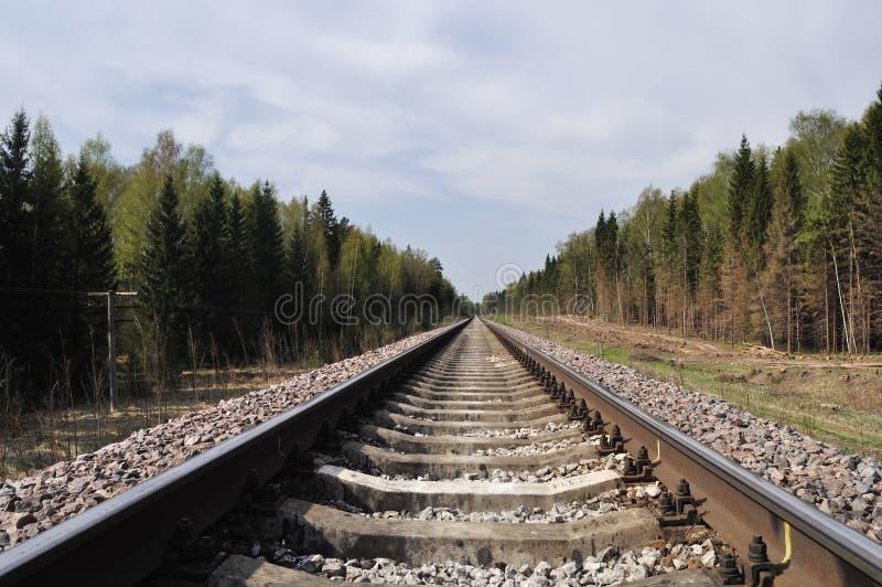 Voie de chemin de fer dans la forêt photo stock