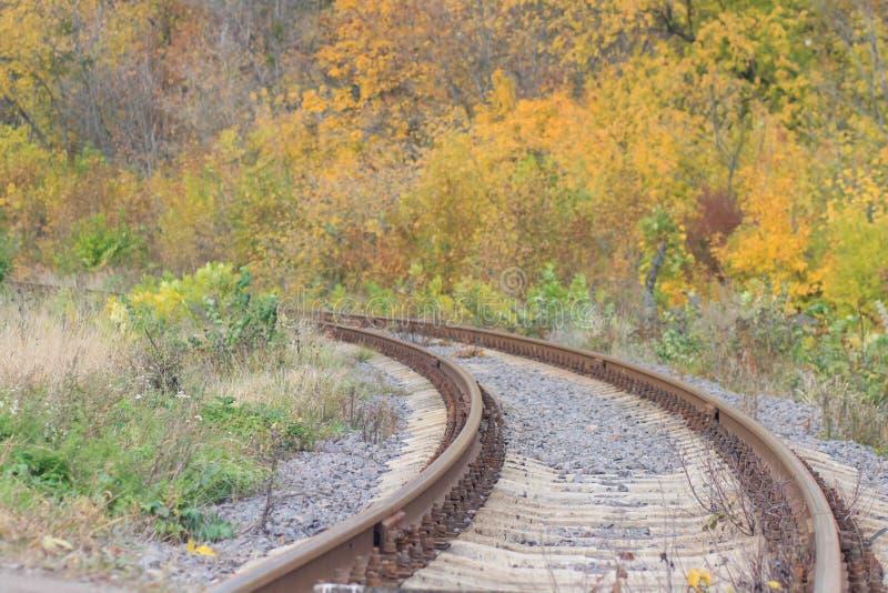 Voie de chemin de fer ou de tramway dans un beau brouillard de parc d'automne humidité, couleurs chaudes lumineuses d'automne image stock