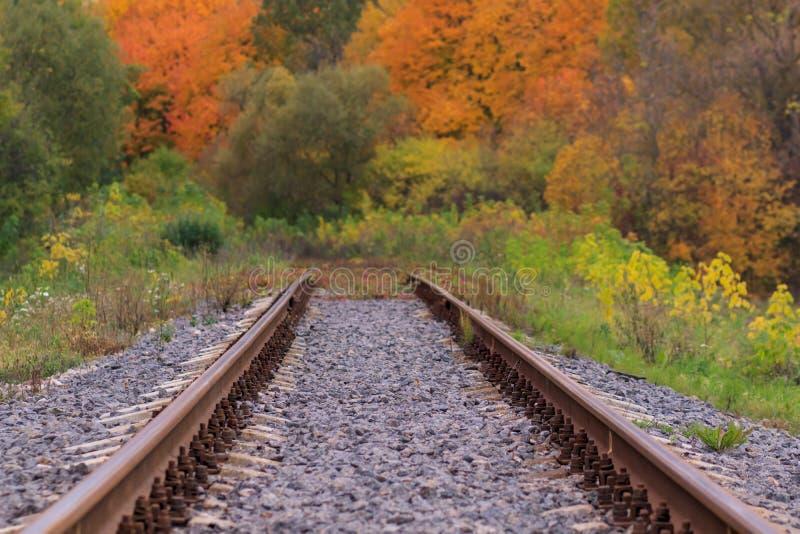 Voie de chemin de fer ou de tramway dans un beau brouillard de parc d'automne humidité, couleurs chaudes lumineuses d'automne image libre de droits