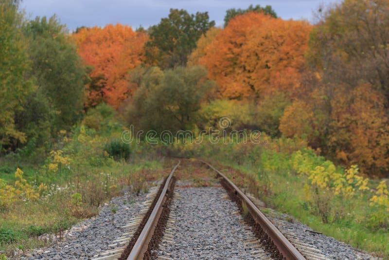 Voie de chemin de fer ou de tramway dans un beau brouillard de parc d'automne humidité, couleurs chaudes lumineuses d'automne photographie stock libre de droits