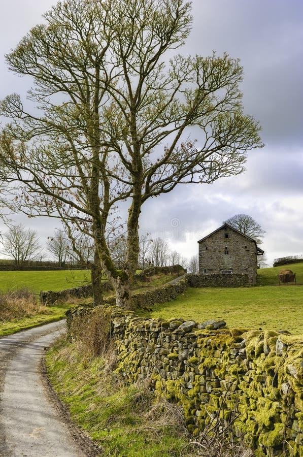 Download Voie de l'anglais de pays photo stock. Image du agriculture - 8666412