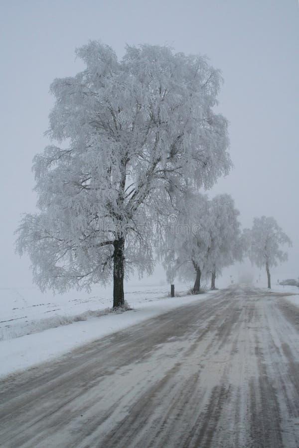 Voie de l'hiver photographie stock