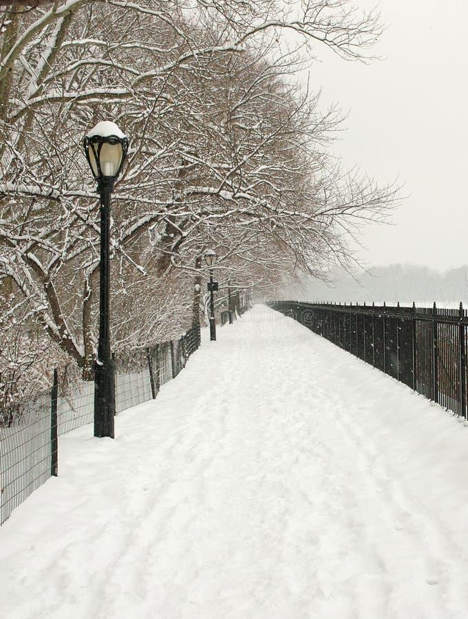 Voie de Milou, Central Park, New York image libre de droits