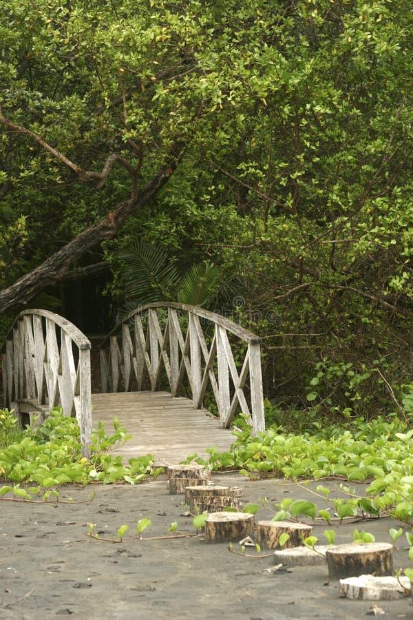Voie de pont photo stock