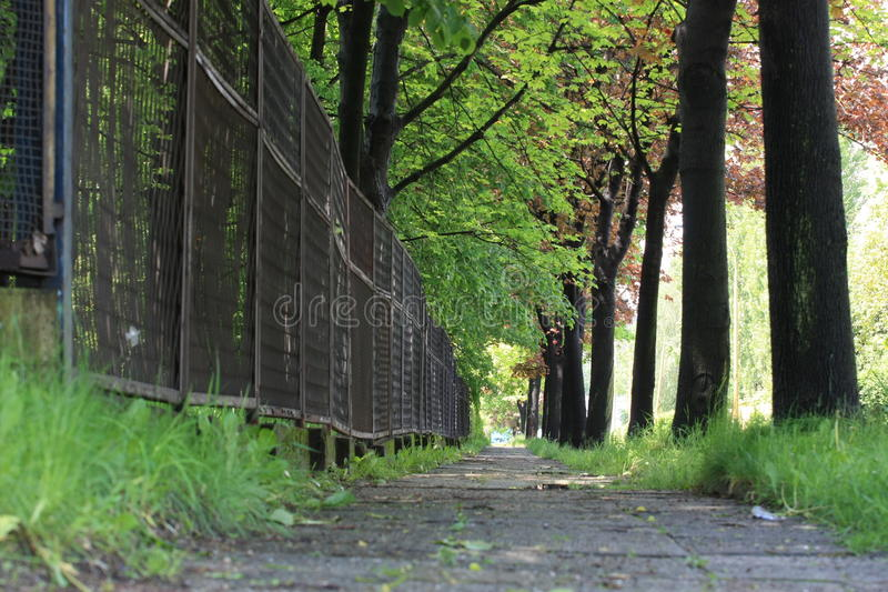 Voie de promenade de bord de la route dans Bielsko-Biala images libres de droits