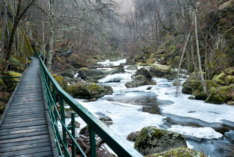 Voie en bois au-dessus de la rivière image stock