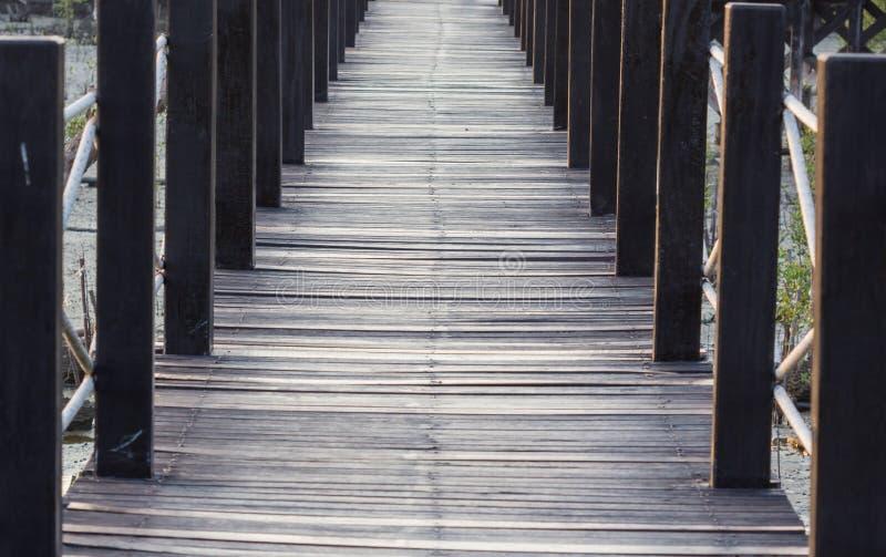 Voie en bois de chemin parmi la forêt de palétuvier images stock