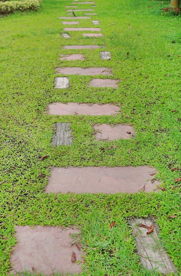 Voie en pierre en parc avec le fond d'herbe verte photos stock