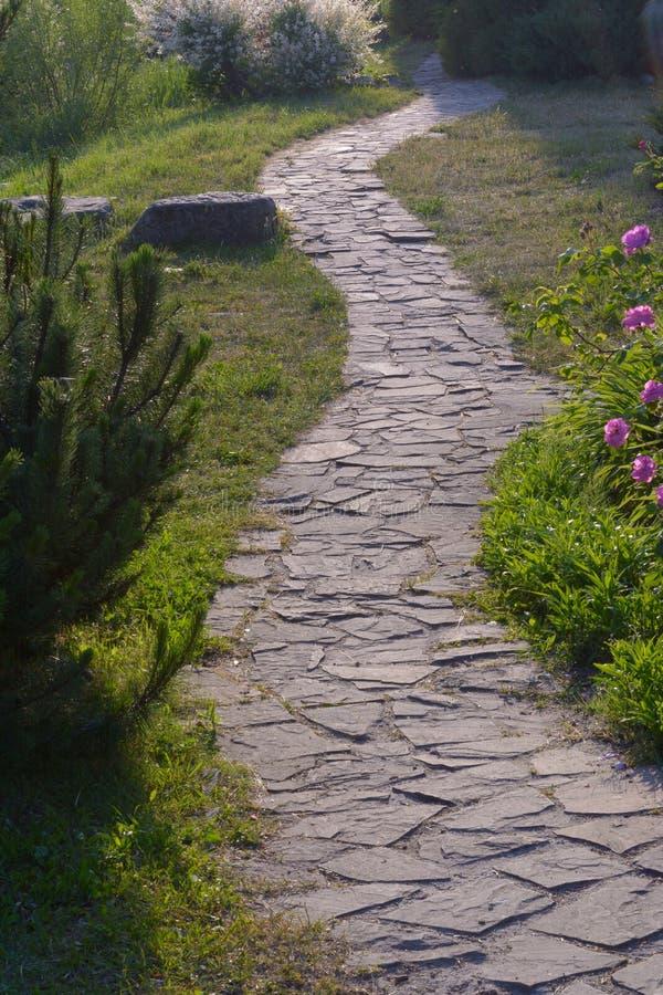 Voie en pierre près des arbres et des fleurs dans le jardin pendant le temps de jour images stock
