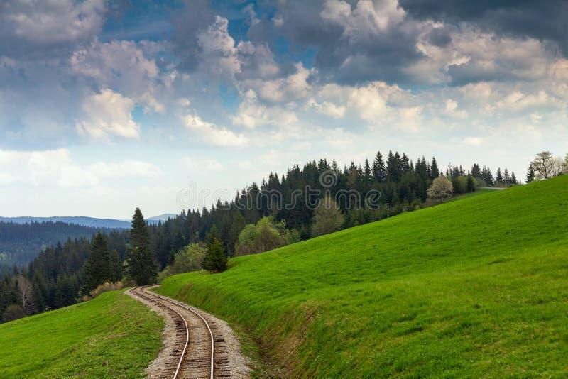 Voie ferroviaire forestière image stock
