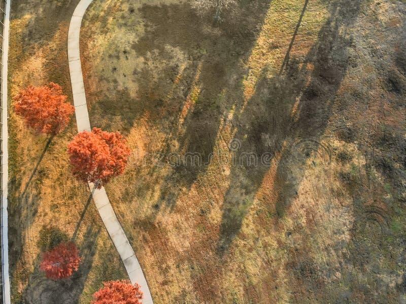 Voie incurvée de vue supérieure avec les feuilles d'automne colorées près de Dallas, le Texas photos stock