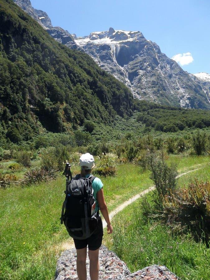 Voie Nouvelle-Zélande de Milford images libres de droits