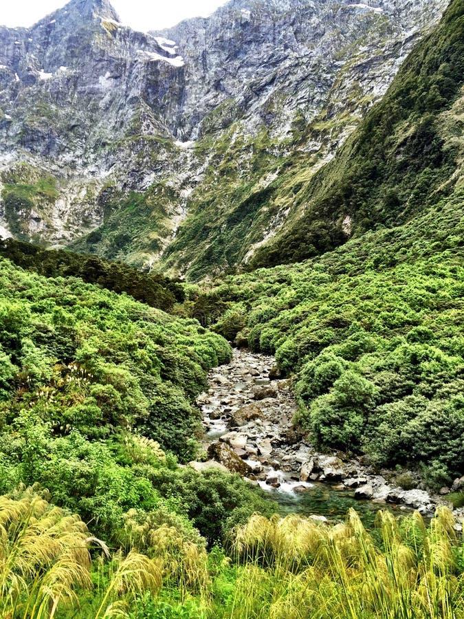 Voie Nouvelle-Zélande de Milford image stock