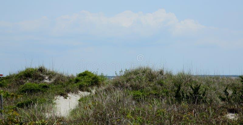 Voie par des herbes au-dessus des dunes de sable photographie stock libre de droits