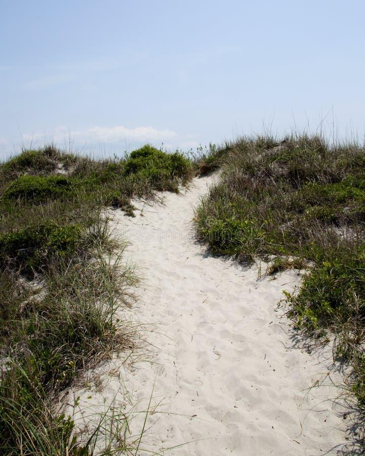 Voie par la végétation au-dessus des dunes de sable photos stock