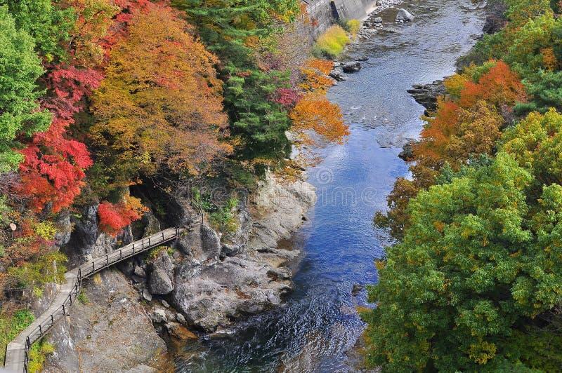 Voie par le côté d'un fleuve en automne image stock