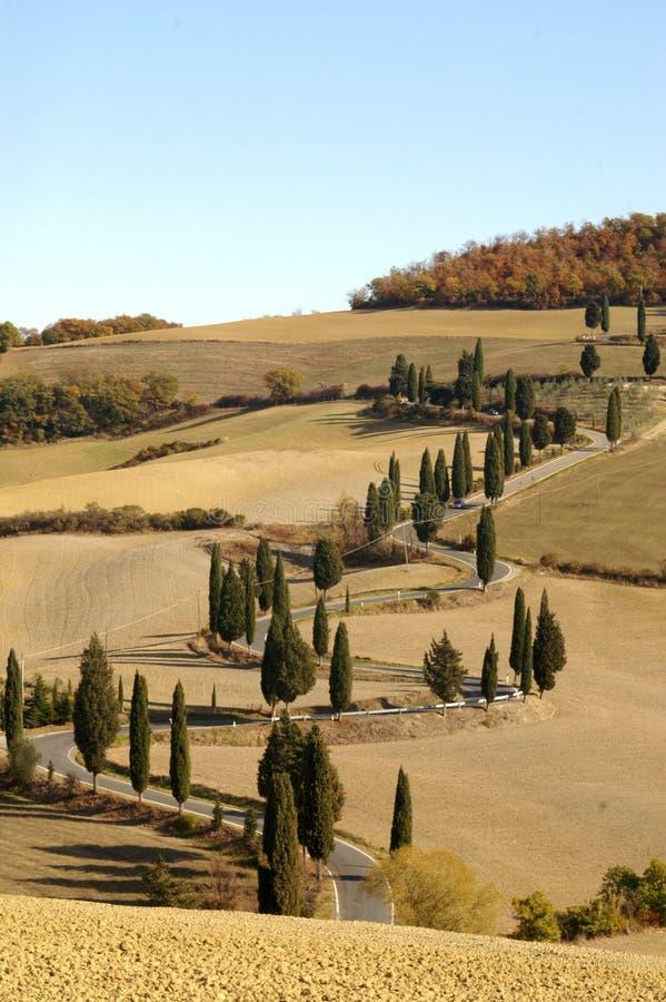 Voie Toscane de Cypress photo libre de droits