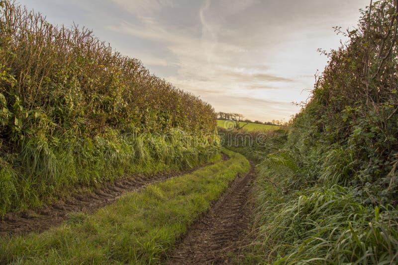Voie verte antique trackway photos libres de droits