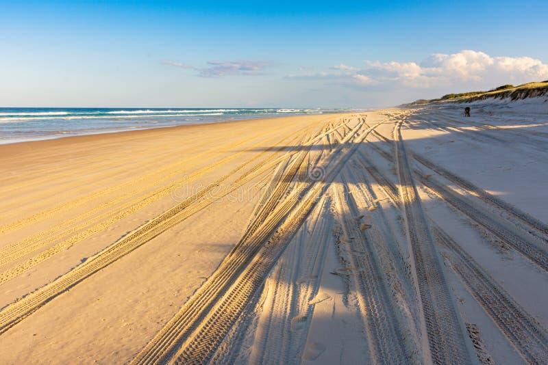 Voies dans le sable sur la plage photographie stock