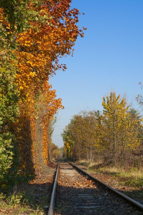 Voies de chemin de fer pendant l'automne avec les arbres colorés photographie stock