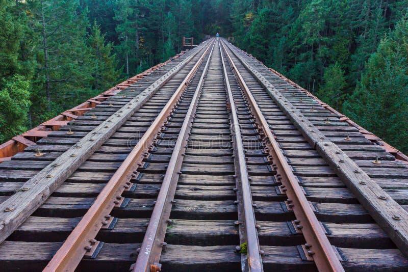 Voies de chemins de fer fusionnant dans la région sauvage photo stock