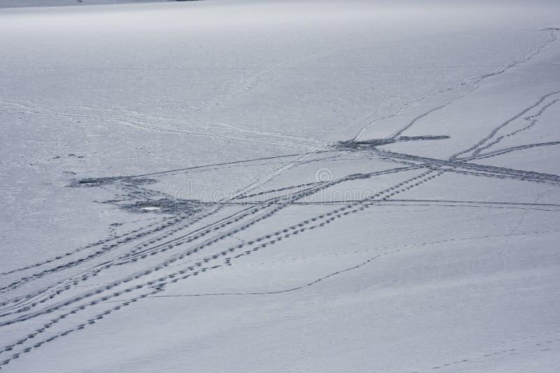 Voies de pêche de glace photographie stock libre de droits