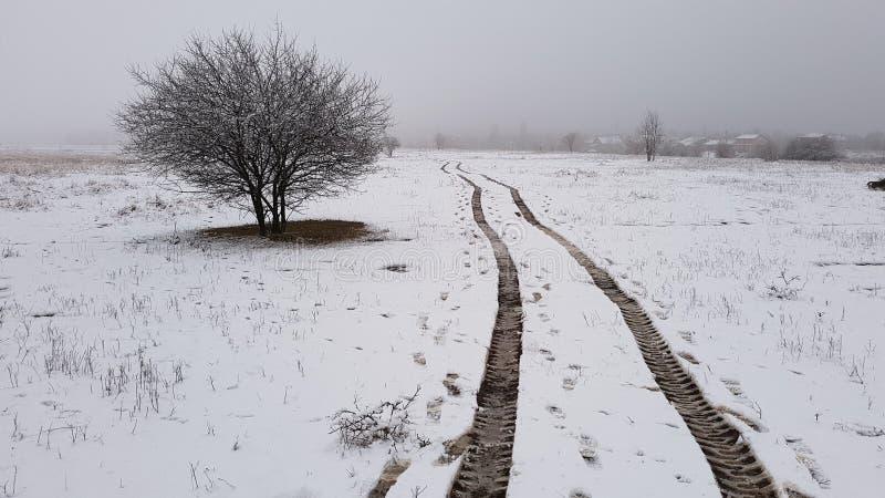 Voies de pneu au-dessus de champ neigeux image stock