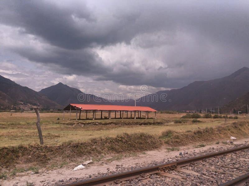 Voies de train et pré jaune avec la montagne photographie stock