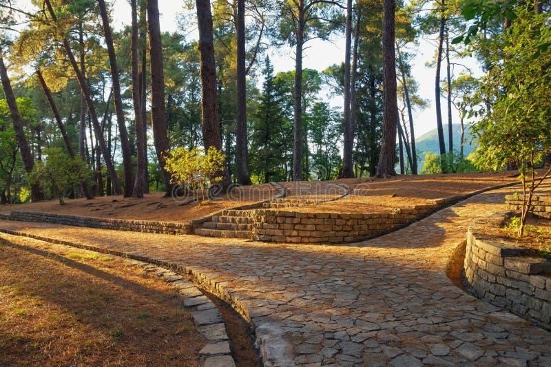 Voies en parc Monténégro, vue de jardin botanique dans la ville de Tivat photo stock