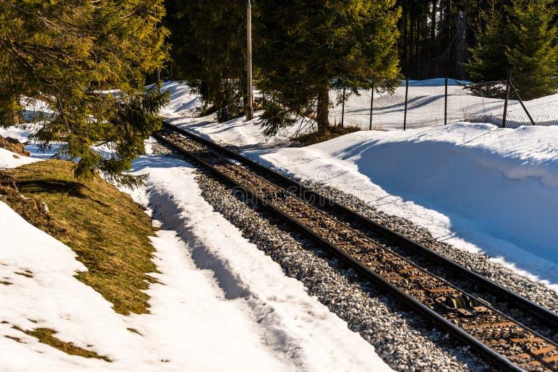 Voies ferrées jusqu'au dessus de la montagne dans Zakopane, Pologne Est autour la neige et les arbres se développent image stock