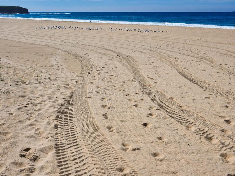 Voies fra?ches et empreintes de pas de pneu sur la plage ? sable jaune image libre de droits