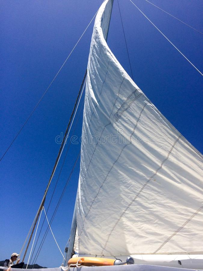 Voile blanche massive images stock