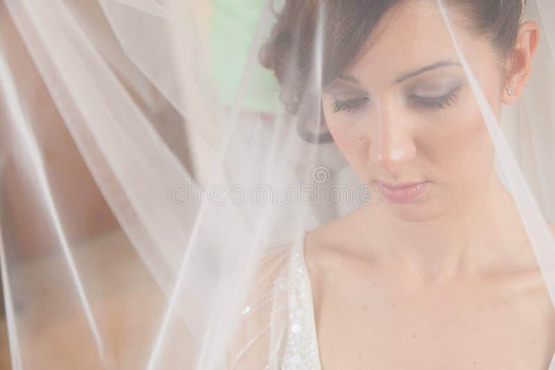 Voile de jeune mariée photo libre de droits