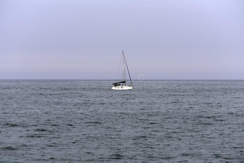 Voilier blanc sur la mer photos libres de droits