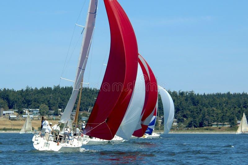 Voilier emballant sur Puget Sound, île de Whidbey, Washington State, photo stock